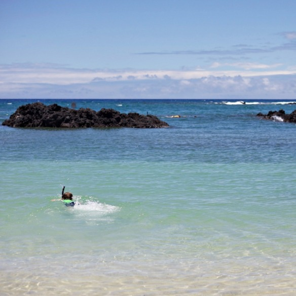 Hawaii18